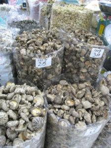 Food Travelist Singapore Shopping Mushrooms