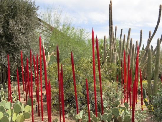 Love this bright red in the desert.