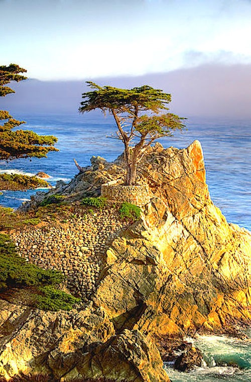 17 Mile Drive California