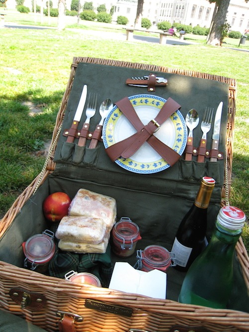 Picnic in Vienna