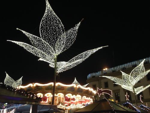 Wiesbaden twinkling lilies