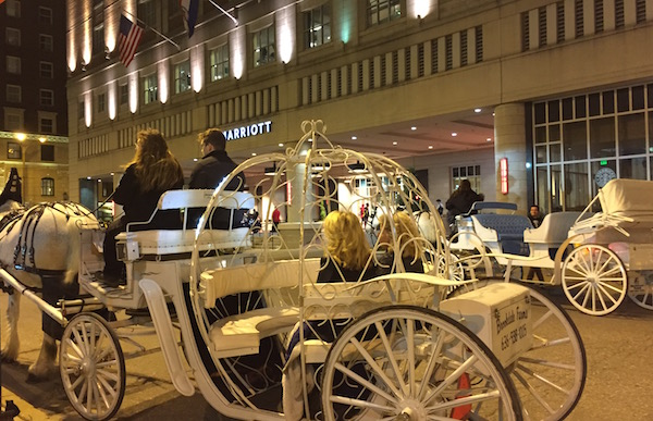 Carriage Rides of Washington Avenue STL