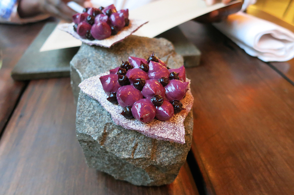 Photo4_Deer_Berries_Borago_AuthenticFoodQuest