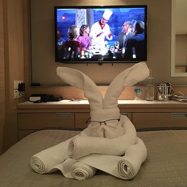 Towel Sculpture on Viking River Cruises