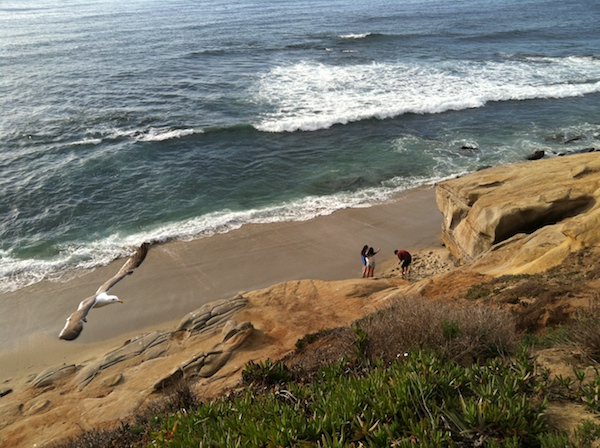 La Jolla coastline-Photo credit Robert Arends SanDiego.org