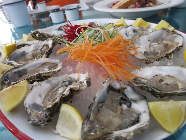 Oysters at Fresco in Mazatlan