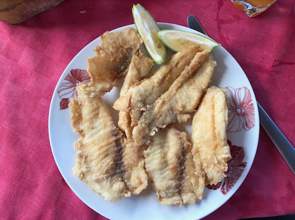 Trinidad Fish Photo