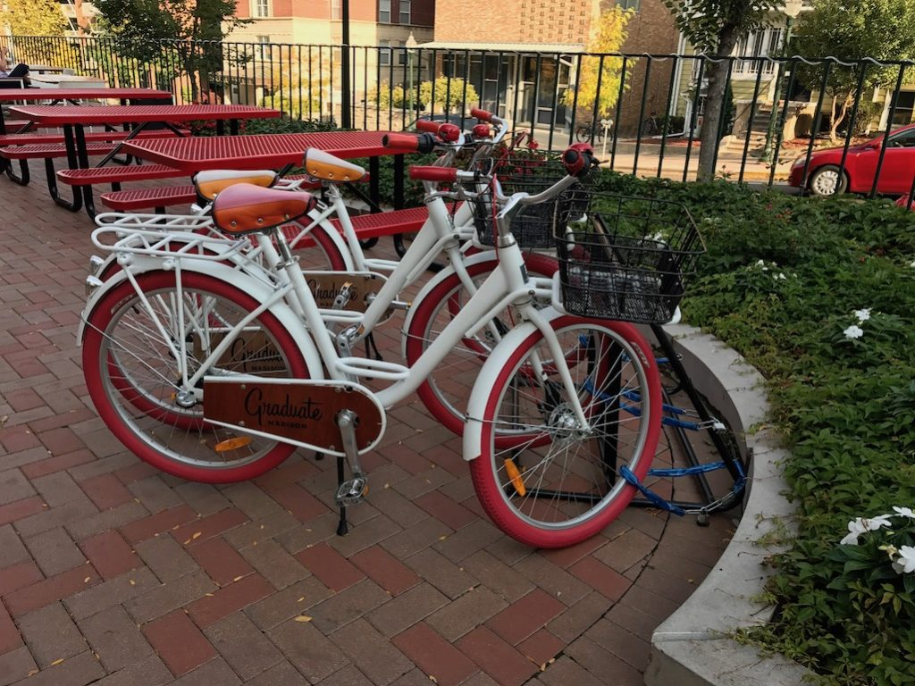 Bikes for riding at the Graduate Madison