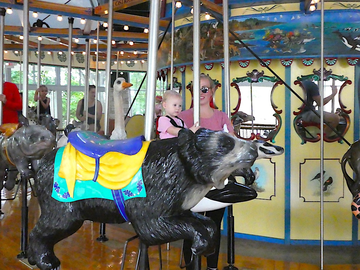 Conservation Carousel at the Henry Vila Zoo Madison WI
