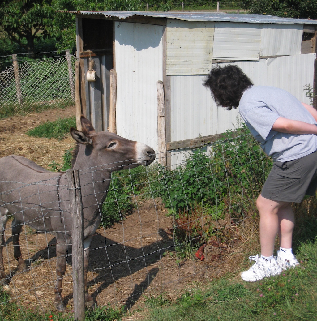 Diana visiting a donkey in Burgundy, France