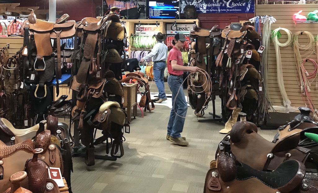 Practicing Roping in the saddle store in Stockyards City OKC
