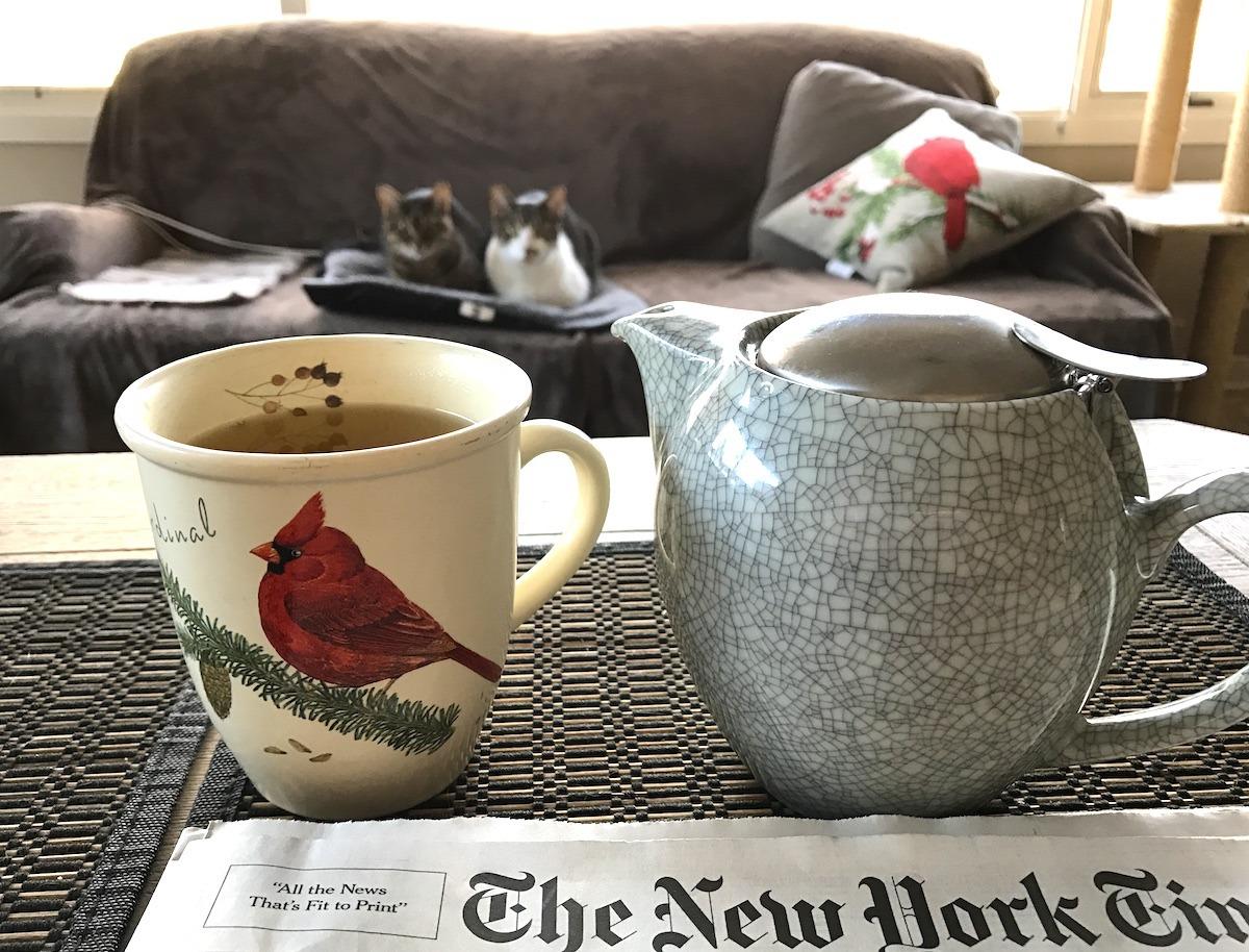 Tea with cat friends