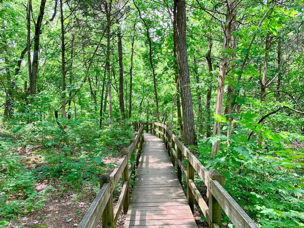 Bridge at Natural Bridge State Park