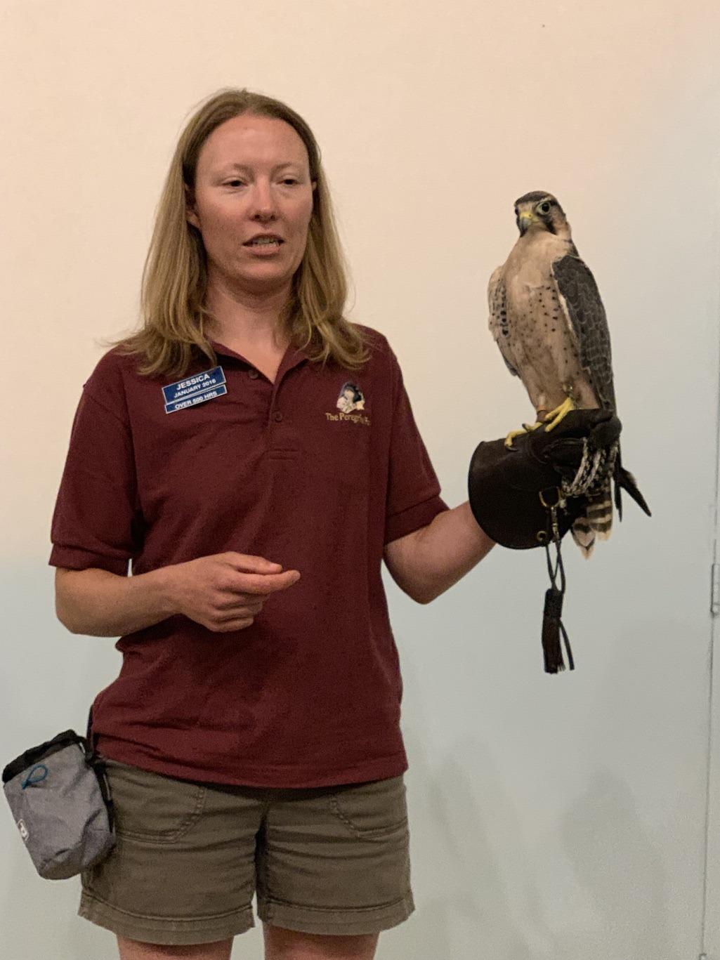 World Center for Birds of Prey Boise Idaho