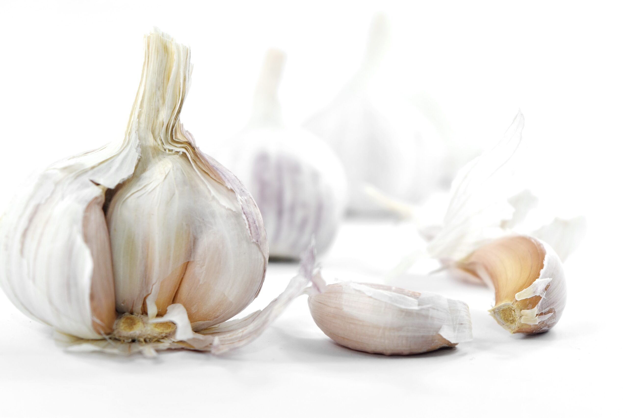 Gorgeous Garlic