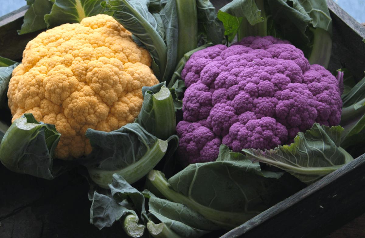 Fun Cauliflower Colors