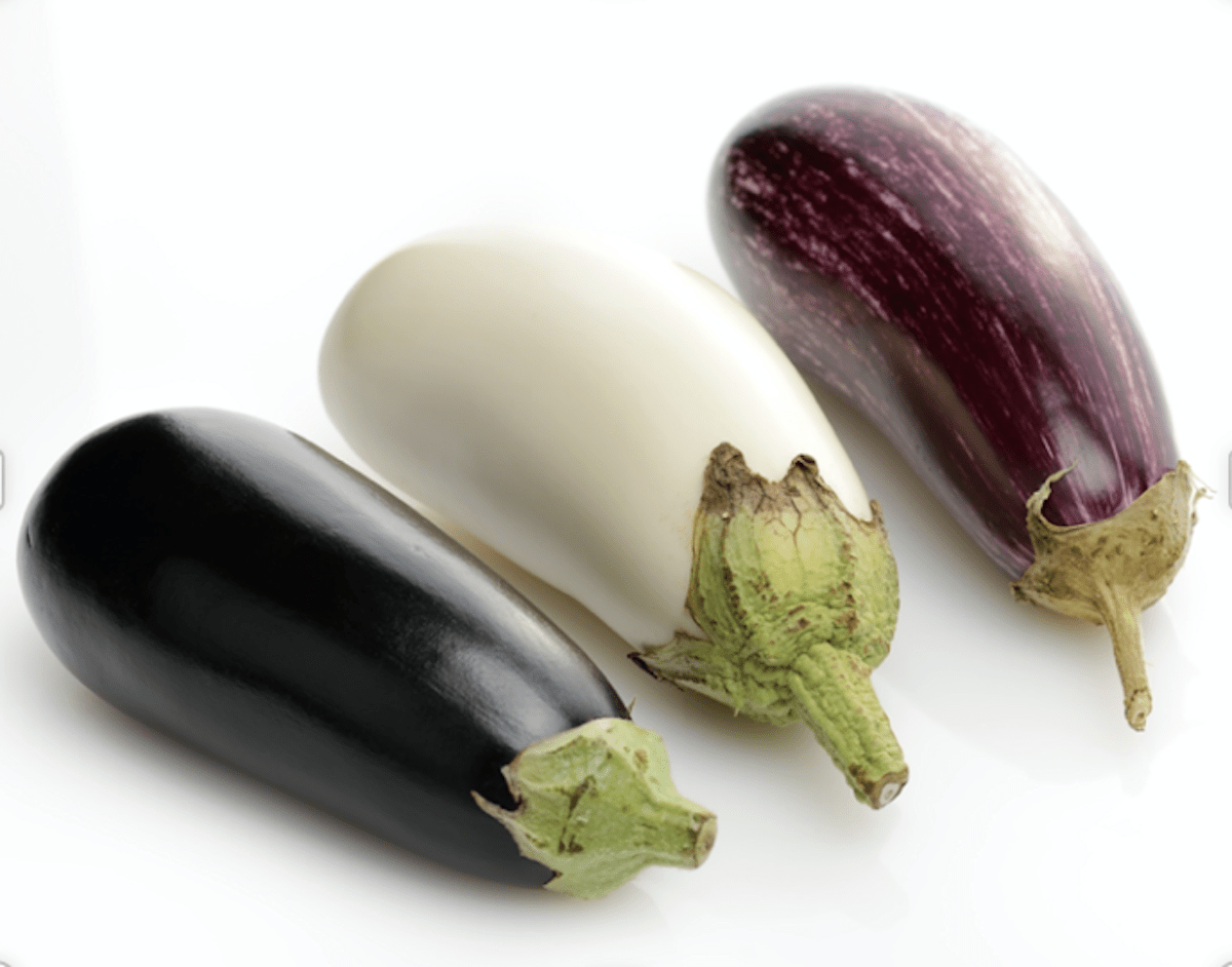 Many Different Types Of Eggplant