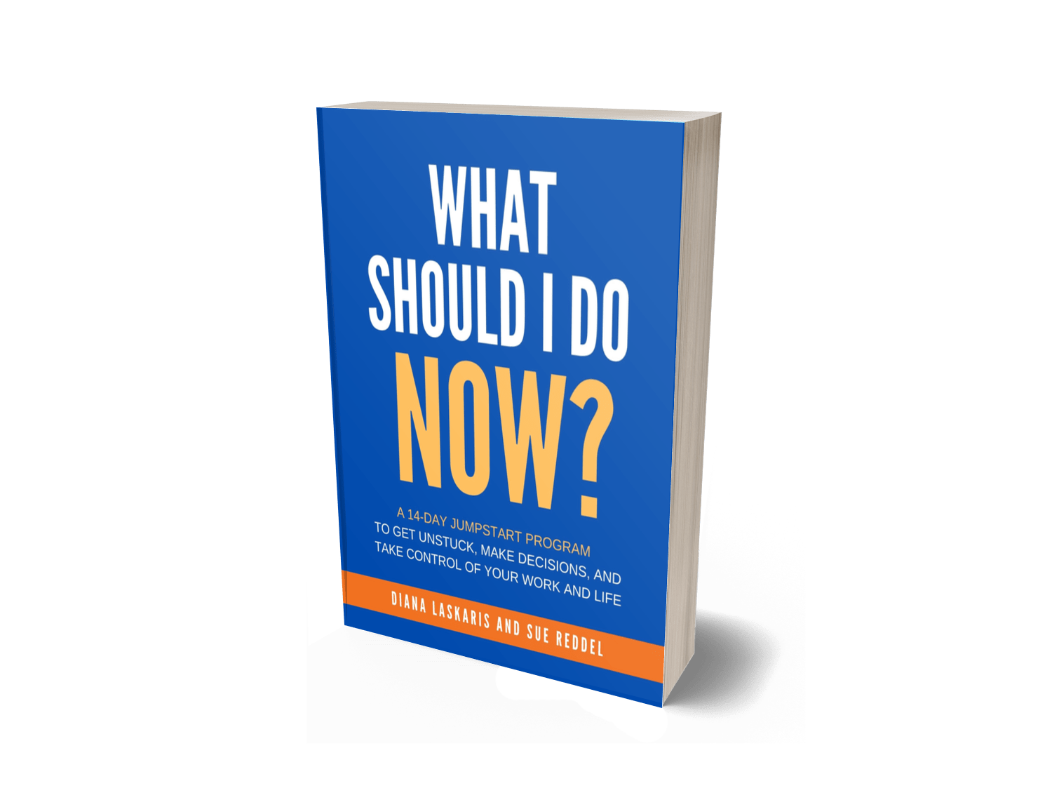 WHAT SHOULD I DO NOW BOOK
