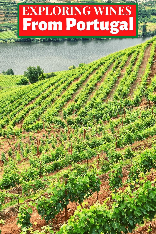 Portugal wine pin